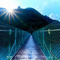 Photos: 大洞川吊り橋中間
