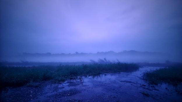 突然現れた濃霧(荒川)