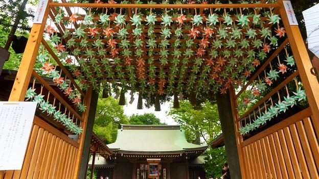 川越氷川神社2020-8