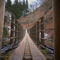 Photos: 尾ノ内百景-吊り橋