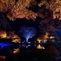 桜山公園-1