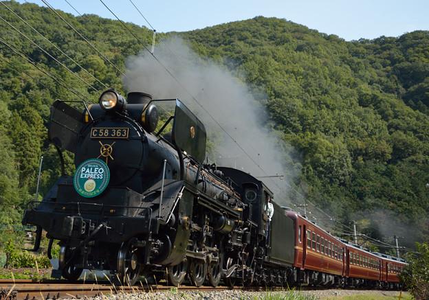 鉄道の日 秩父鉄道 パレオエクスプレス