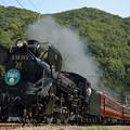 Photos: 鉄道の日 秩父鉄道 パレオエクスプレス