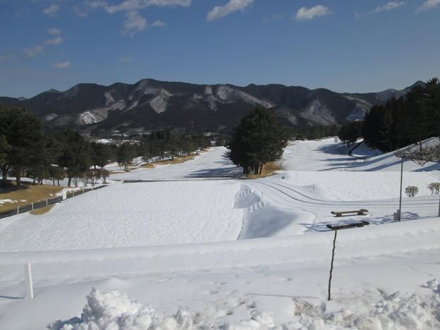 写真: 足利カントリークラブ飛駒コース最新コース画像201.2.10