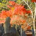 Photos: 羅漢さまも紅葉狩り♪