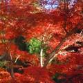 佛通寺の紅葉2012