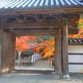 山門(総門)の紅葉 in 佛通寺