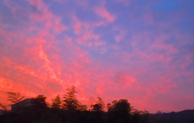 梅雨の朝焼け in 千光寺山