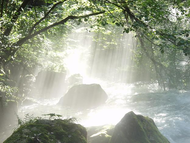 河内の風穴