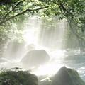 写真: 河内の風穴