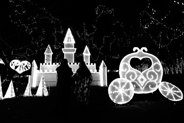 冬 光の祭典 光の城と馬車