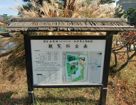 matsumotozyo-231104-3