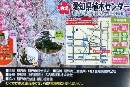 inazawa umematsuri-250303-7