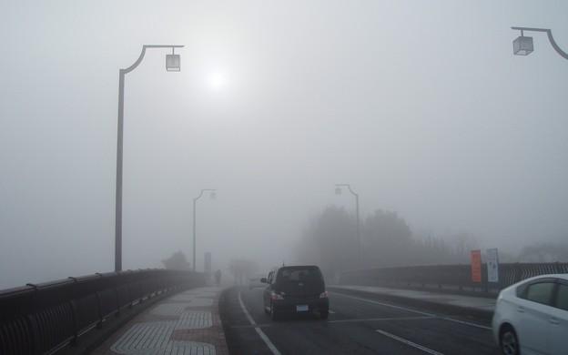 023b4_20140122霧の朝(4)