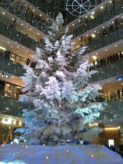 メリークリスマス(*'▽'*)~??*