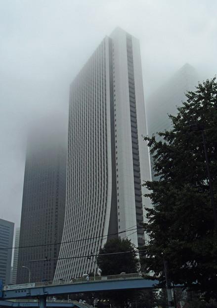 雲が低い・・