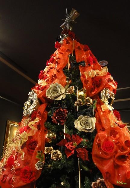 写真: クリスマス