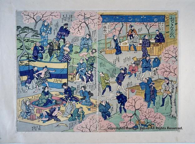 燗銅壺 歴史 江戸の花見 錦絵・作者不明