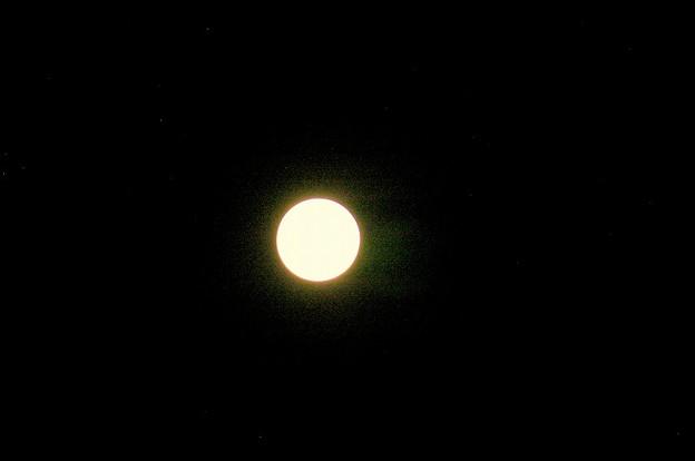 月見004
