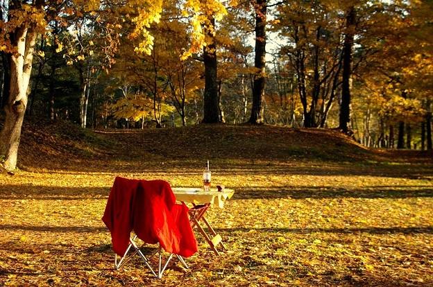 秋の風流ツーリング