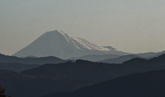 富幕山へ今年☆トミー98回登頂