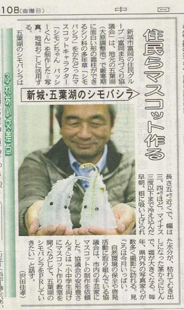 シモバシラ中日新聞に・・