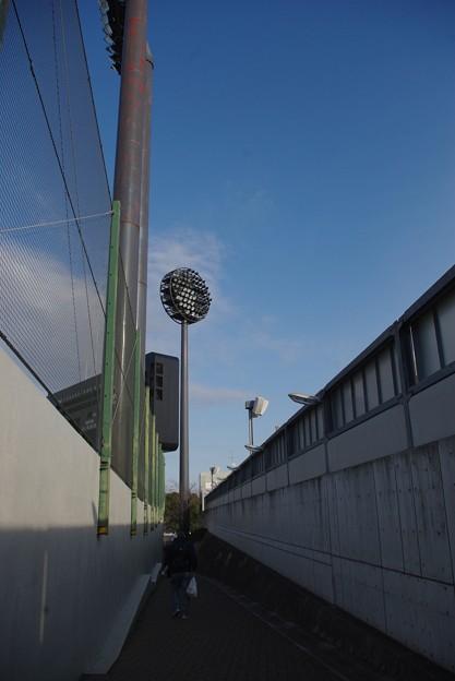 02/03 氷川神社参拝