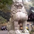 群馬縣護國神社 狛犬。