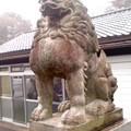 群馬縣護國神社 獅子。