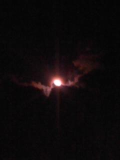 写真: 今夜の月。