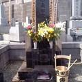 春の彼岸の墓参り。