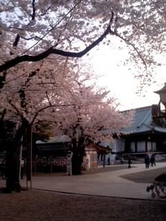 花の都の靖国神社。