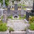 角田家代々之墓(6月10日)。