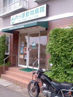 のっぽ動物病院(9月13日)