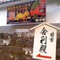 假屋崎省吾の世界(11月6日、円覚寺)