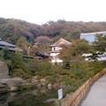 円覚寺(11月6日)