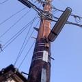 Photos: 木の電柱(1月22日、小袋谷町内会)