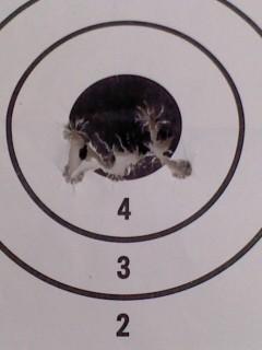 弾痕(2月2日、予備自衛官招集訓練)