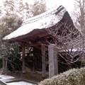 雪の山門(2月14日、小袋谷成福寺)
