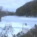 Photos: 御成小学校校庭(2月15日)