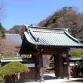 久成寺(3月21日、鎌倉市植木)