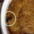 Photos: 米麹味噌 20120904