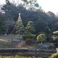 日本庭園 C01420