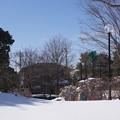 雪の翌日_公園 C08403