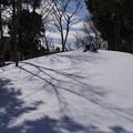 雪の翌日_公園 C08404