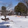 雪の翌日_公園 C08405