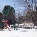 雪の翌日_公園 C08406