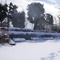 雪の翌日_公園 C08409