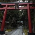 Photos: 来宮神社 F8572