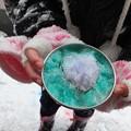 Photos: 雪遊び